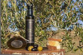 Azeites olivas de Gramado RS (13).jpg