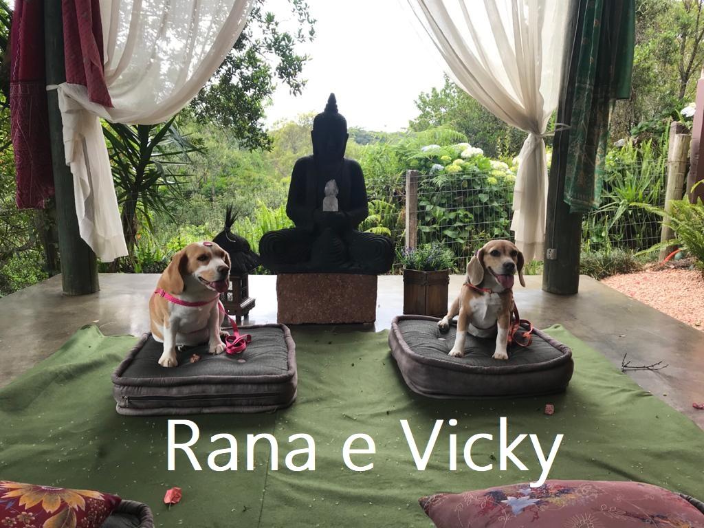 Vicky e Rana (00000002)