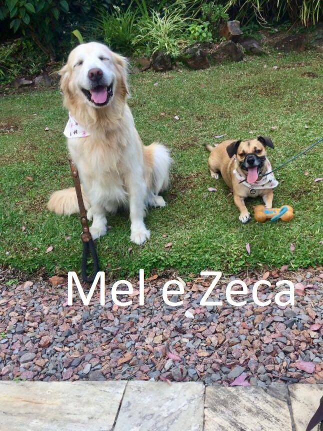 Mel e Zeca