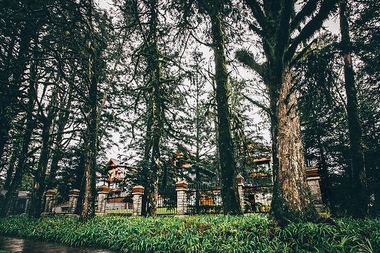 Compre o terreno dos sonhos em Gramado