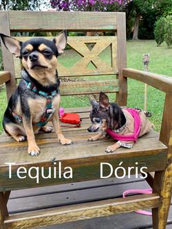 Tequila e Dóris