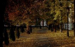 otoño, Polonia