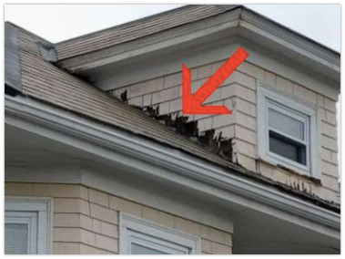 Nuhom - home tour tips - roof and siding