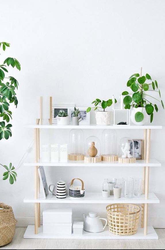 incorporate plants into your shelfies