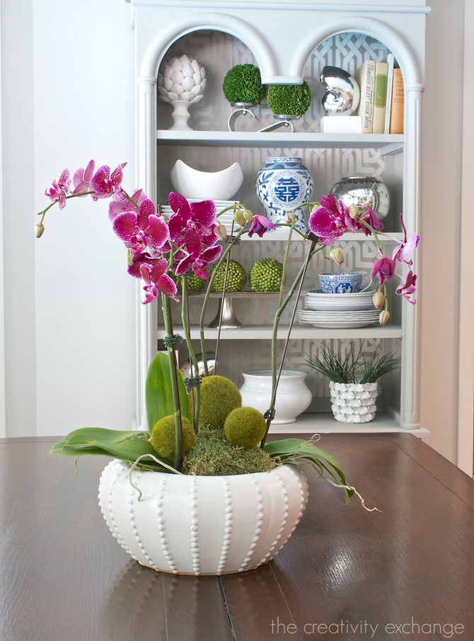 Tricks to Make Your Store-Bought Orchid Look Like a More Expensive Arrangement