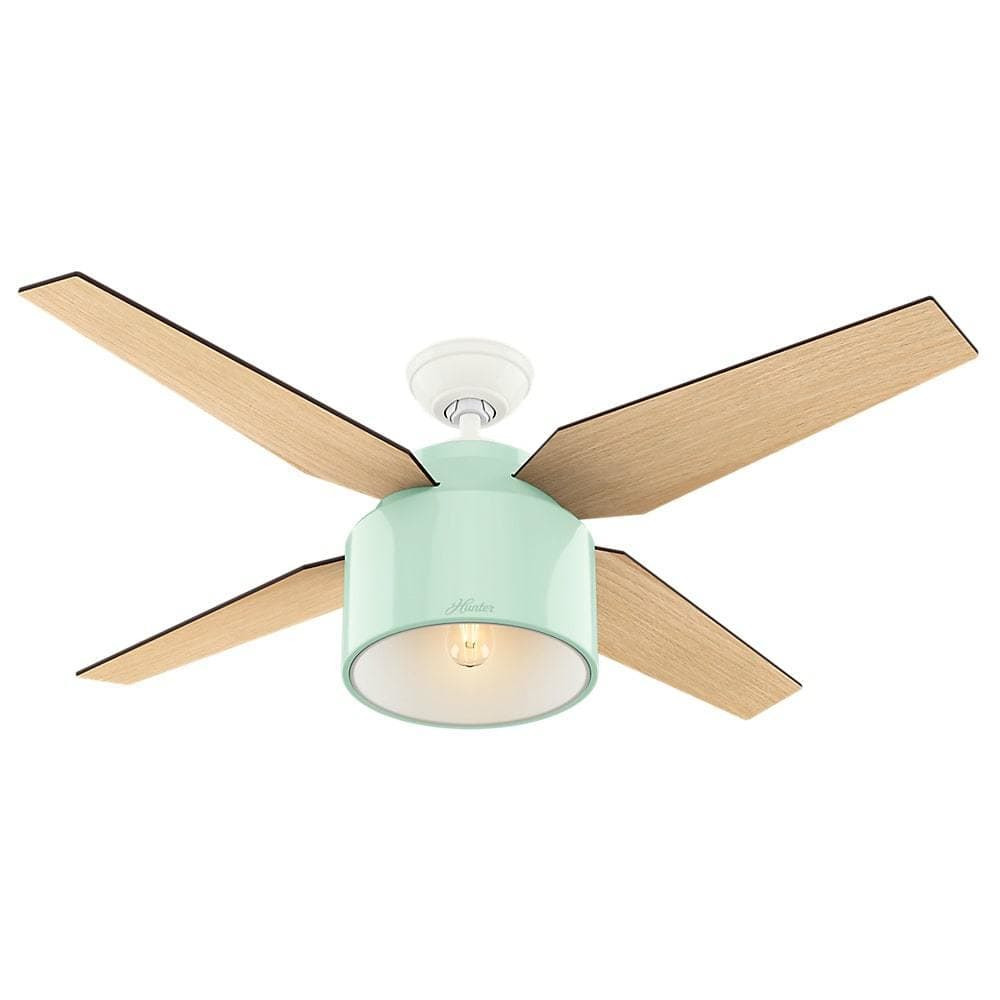 Hunter mint and wood ceiling fan from Overstock