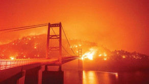 Igniting a Political Firestorm, the California Wildfires