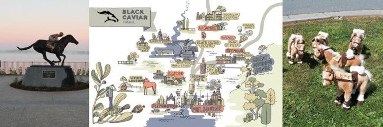 black-caviar-reel-racing-768x256.jpg