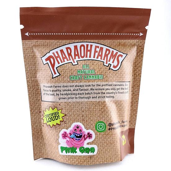 Pink Goo Pharaoh Farms