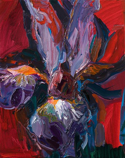 괴물(iris), 캔버스에 유채, 40.9×31.8cm, 2019