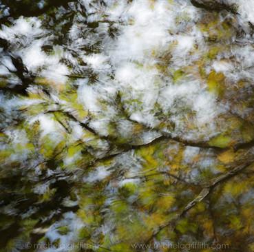 An Autumn Palette