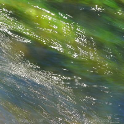 Grass, Reflected IV