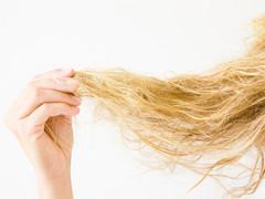 悩める切れ毛の治し方について|今流行の髪質改善で治るのか?