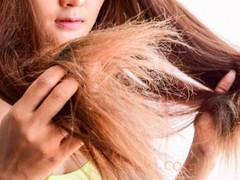 髪の潤いを保ち乾燥から守る方法とは?