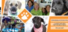 Animal House LinkedIn.jpg