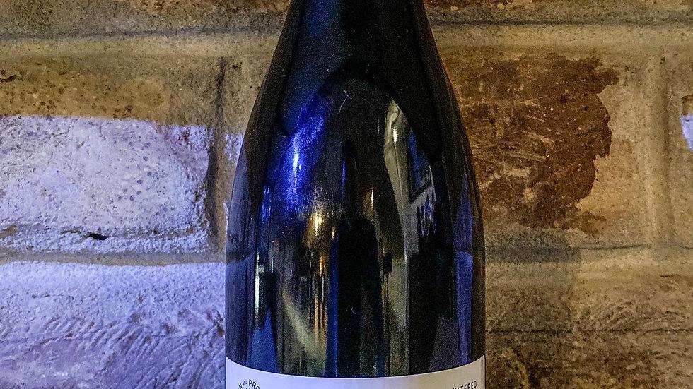 Bott Frigyes - Pinot Noir (2019) 0,75l