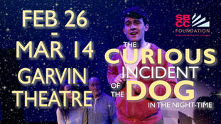 Archive - The Curious Incident of the Dog in the Nighttime