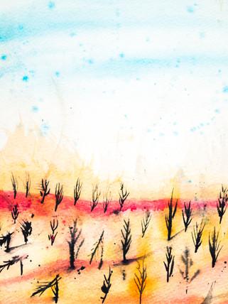 acrylic-3.jpg