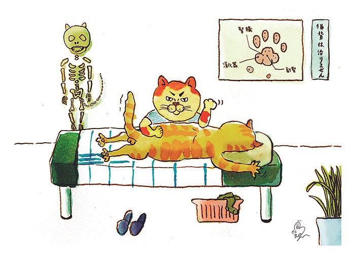 猫マ師.jpg