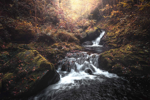 """Waterfall autumn"""