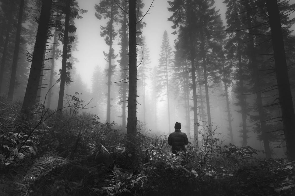 """""""Seul dans les bois"""""""