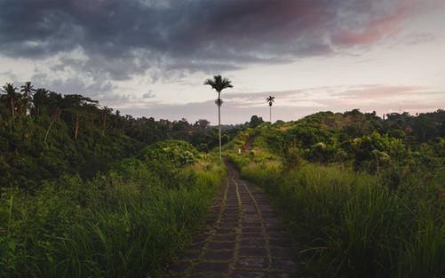 """Purple sunset on Bali"""