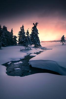 """Purple winter sunset"""
