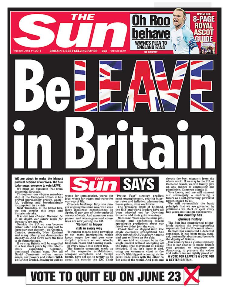 The sociology teacher - The Sun and Brexit