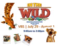 VBS in the wild 2019 engl.jpg