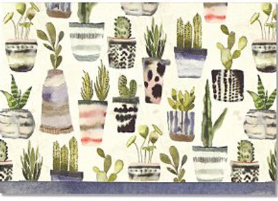 Blank, boxed notecards Watercolor Succulents 10 cards and 11 designer envelopes