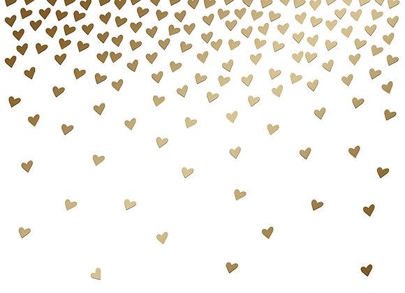 Blank Boxed Notes, Gold Foil 12 cards & foil lined envelopes