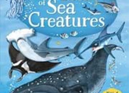 The Usborne Big Book of Sea Creatures (hard cover)