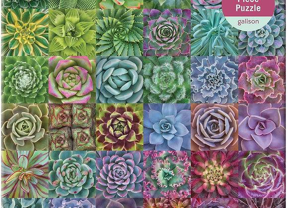 Succulent Spectrum