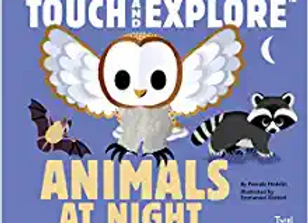 Touch and Explore Animals at Night (Board Book)