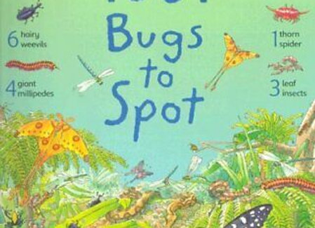 Usbourne 1001 Bugs To Spot