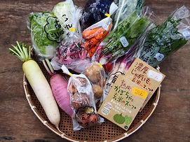 野菜セット.JPG.jpg