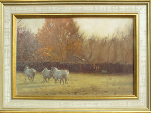 Sheep on an Autumn morning