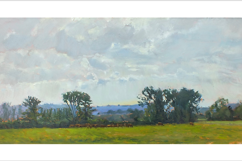 "Giclee print of ""Cows and clouds"""