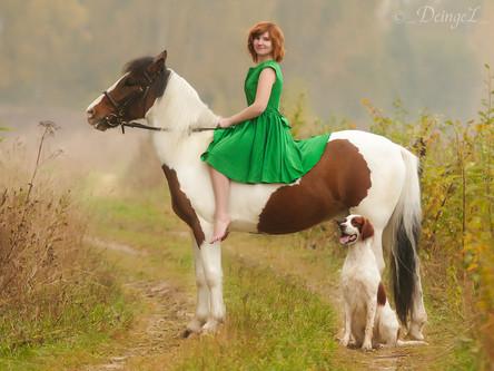 Сказка о собаке и коне