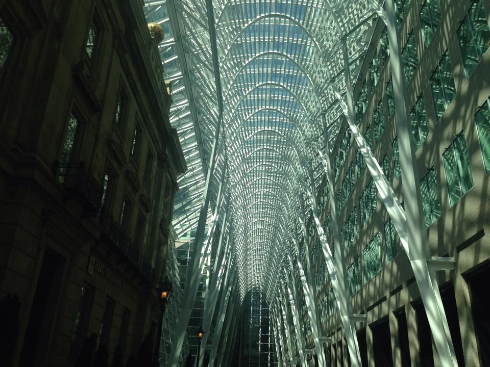 The light does shine on Toronto!