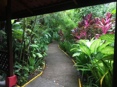 February Getaway: Costa Rica & Nicaragua!