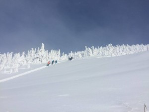 We found an amazing powder in Revelstoke, BC