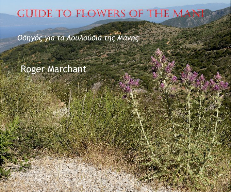 A Guide to Flowers of Mani
