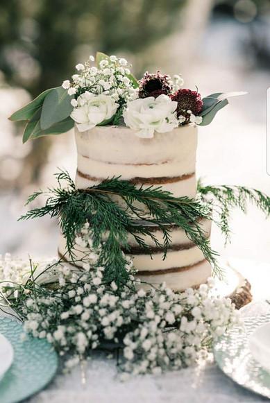 Elopment Naked Cake