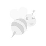 Bee-Transparent-PNG_edited.png