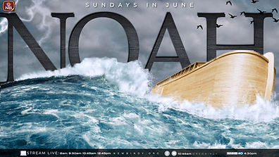 NOAH- JUNE 2020.jpg