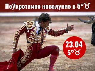 23.04 Неукротимое и своеВольное Новолуние в Тельце - коррида!