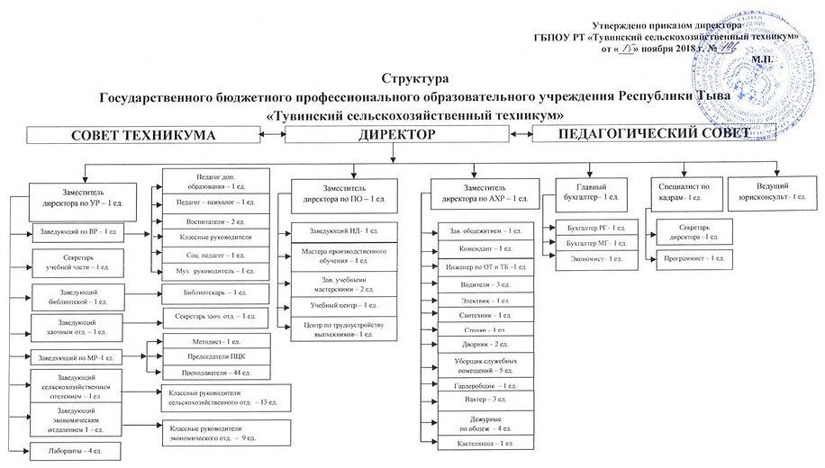 структура техникума.jpg