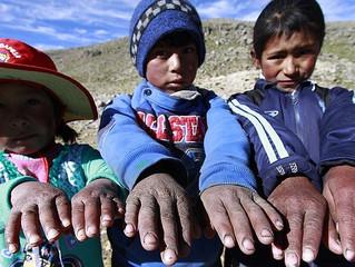 El frió mata a 600 peruanos en estos últimos días. Seria hermoso, si los que compramos una camiseta