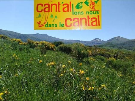 Reprise des activités au Nordicateam Puy Mary                 Zoom sur la Cani-Randonnée cet été